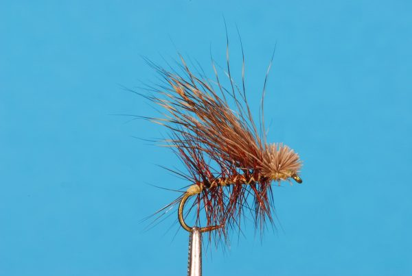 RF Hair Wing Caddis # xx BL